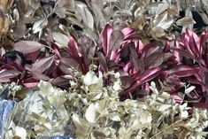 Metallic foliage at New Covent Garden Flower Market - Christmas 2015