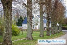 Rynkeby Bygade 10, 5350 Rynkeby - Smuk villa på Fyn med plads til begejstring #villa #rynkeby #fyn #selvsalg #boligsalg #boligdk