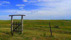 gate (and a south dakota sky)