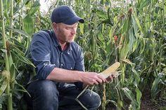 Growing crops in rural Oregon is helping some addicts work through recovery and sobriety.