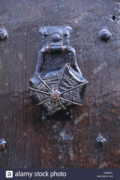 Download this stock image: Architectural Details - Brass Spider door knob. - C2MM7K from Alamy's library of millions of high resolution stock photos, illustrations and vectors. Door Knobs And Knockers, Knobs And Handles, Door Handles, Cool Doors, Unique Doors, Door Furniture, Funky Furniture, Window Accessories, Witch House