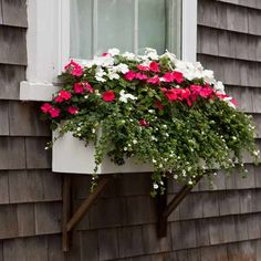 A trimming of white-flowering bacopa adds textural interest to a layered mass of familiar pink and white impatiens. | Photo: Deborah Whitlaw Llewellyn | thisoldhouse.com