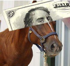 Jeśli chodzi o kasę, nie zrób siebie w konia Humor, Humour, Funny Photos, Funny Humor, Comedy, Lifting Humor, Jokes