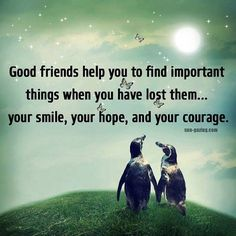 Good Friends @lifestylesoluti @QueenieAmalia @chisato16 @itszoekatelyn @ggpaigegg @abeeralsaraf @rohitkumar86
