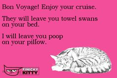 Enjoy your cruise. They will leave you towel swans on your bed. I will leave you poop on your pillow. Crazy Cat Lady, Crazy Cats, Towel Swan, Swans, Cool Cats, Cruise, Kitty, Humor, Pillows