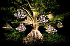 Photograph The Faraway Tree by Kirsty Mitchell on 500px