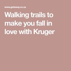 Walking trails to make you fall in love with Kruger