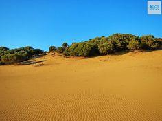 Η μοναδική έρημος της Ευρώπης βρίσκεται στην Ελλάδα. Ποια πασίγνωστη ταινία έκανε γυρίσματα εκεί;