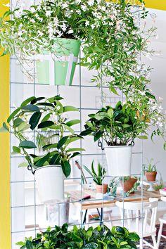 9-DIY-jardim-vertical-para-pequenos-espaços