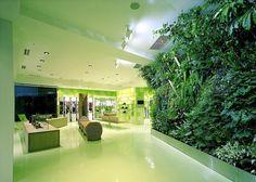 Vertical Gardens | iGNANT