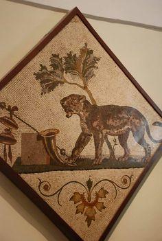 Pompeii artifacts...tile mosaic.