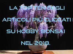 La Top Ten degli articoli piú cliccati e votati su Hobby Bonsai nel 2018. Hobby, Bonsai, Top, Crop Shirt, Shirts, String Garden