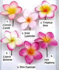Fragrant frangipani tattoo - Google Search
