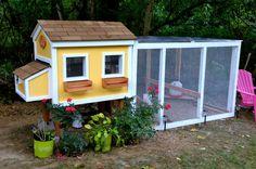 Gracias a un poco de pintura brillante y flores floreciendo, este gallinero-alegre que incluso tiene su propia ventana cajas se parece a una pequeña casa.  Obtener el tutorial en Pollos del patio trasero.