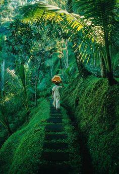 lush steps (mytheresa)