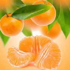 Tangerine Dreams Fragrance Oil | Natures Garden Scents