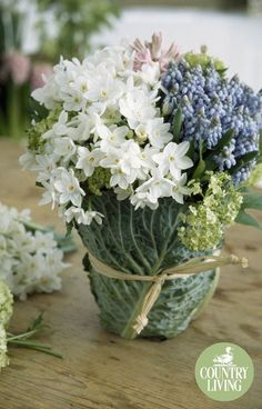 Cabbage leaves conceal an ordinary jar, creating an unusual receptacle for a bouquet of paperwhites, blue muscari, pale pink hyacinths and lime guelder rose. Rather than mixed in the more traditional way, each delicate variety has been grouped together for added impact.