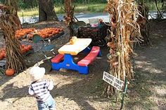 GreenLevelGourdFarm...says its great for toddlers.