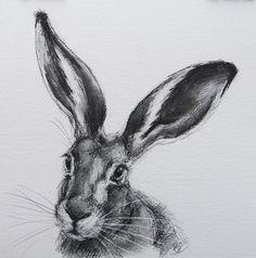 11 « x 11 » ORIGINAL dessin d'un lièvre par Animal artiste Belinda Elliott du charbon de bois