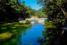 Cairns and Port Douglas on a Budget: Mossman Gorge. Photo by R Reeve