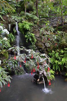 Jardim Tropical Monte Palace a Funchal: 14 opinioni e 74 foto