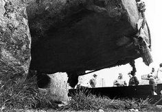 Stonehenge, one of the wonders of the ancient world. These 105 photos supposedly prove it was built about 100 years ago, but do they show this? Rare Pictures, Historical Pictures, Stonehenge History, Astronomical Observatory, University Of Sheffield, Mystery Of History, Historical Monuments, The Beautiful Country