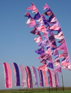 Mauve/violet festival flags from Big Wave Flags.  Love them!