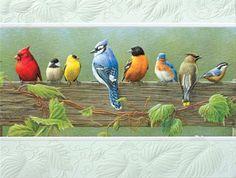Bird theme...