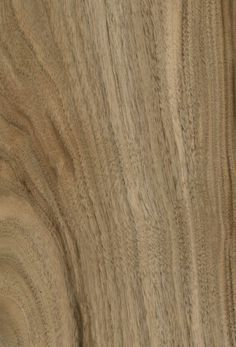 carrelage sol et mur gris paloma 60 x 60 cm hangar oxford pertuis id pinterest carrelage. Black Bedroom Furniture Sets. Home Design Ideas