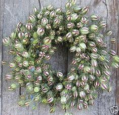 nigella pod wreath