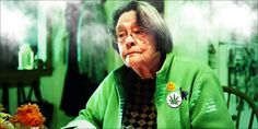Outrage As Elderly Woman Is Raided For One Medical Cannabis Plant - http://houseofcobraa.com/2016/10/12/46179/