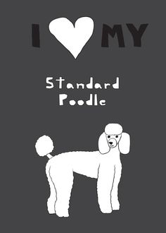 Yes I do!! Poodle needs an S after it!