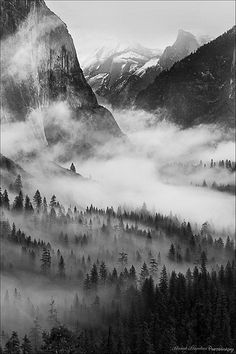 Yosemite National Park, in northern California, is one of the most beautiful parks in the world. It set a record in 2016 with over 5 million visitors. Black And White Photo Wall, Black And White Landscape, Black And White Pictures, Dark Photography, Black And White Photography, Landscape Photography, Photography Basics, Photography Equipment, Photography Tutorials