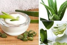 Homemade aloe vera masks for acne and aloe vera hair treatment at home. Homemade aloe vera face masks recipes for perfect skin and aloe vera mask for hair. Aloe Vera For Skin, Aloe Vera Skin Care, Aloe Vera Face Mask, Aloe Vera Hair Growth, Kai, Anti Aging Creme, Natural Kitchen, Beauty Recipe, Healthy Skin