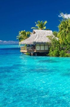 Les Seychelles, Seychelles Islands, Seychelles Honeymoon, Seychelles Beach, Maldives Honeymoon, Vacation Places, Dream Vacations, Vacation Spots, Romantic Vacations