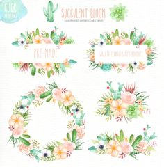 Succulent Bloom Watercolor Cliparts by everysunsun on @creativemarket