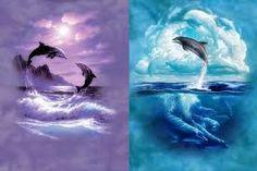 Výsledek obrázku pro delfíni při západu slunce