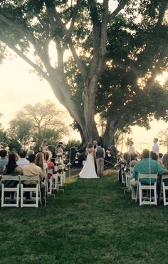Courtney & Jorge married at the Mysore Fig Tree at Edison Ford Winter Estates on Sunday, April 26, 2015.