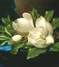 Still Life Magnolia.jpg (280×318)