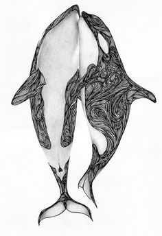 Orcas Ink and pencil Author: Max Rajado Orca Tattoo, Whale Tattoos, Killer Whale Tattoo, Orcas, Tattoo Studio, Posca Art, Drawn Art, Tattoo Und Piercing, Whale Art