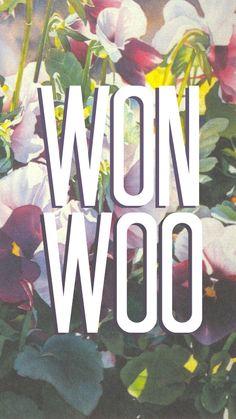 Seventeen    Wonwoo wallpaper for phone