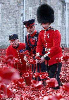 It was created to mark the centenary of the start of the Great War and will eventually include 888,246 ceramic poppies to represent all British or colonial military fatalities