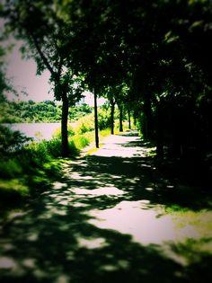 River Walk, Spadina Crescent, Saskatoon SK. Couldn't be prettier!
