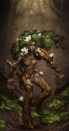 wandering magnolia