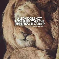 Motivational Quotes For Women Discover 30 Of The Best Lion Quotes In Pictures - Motivational Quotes Of Courage & Strength 30 Motivational Lion Quotes In Pictures - Courage & Strength Motivational Quotes For Success, Great Quotes, Positive Quotes, Inspirational Quotes, Motivational Pictures, Wisdom Quotes, Words Quotes, Me Quotes, 2pac Quotes