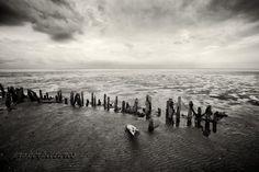 National Park Vadehavet in Denmark