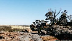 On part one of our road trip through the Golden Outback, explore Mulka's Cave, Wave Rock and the Humps. Uncover the history of Hyden and York. Wave Rock, Western Australia, Perth, Cave, Road Trip, York, Explore, History, Plants