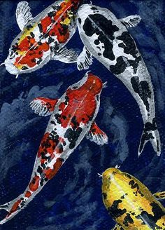 Koi Fish Prints - Koi 2 Print by Linda Peterson Koi Painting, Koi Art, Carpe, Japanese Koi, Fish Drawings, Fish Print, Colorful Fish, Art Pages, Illustrations