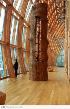 A tree in a tree. A wood art by Giuseppe Penone.