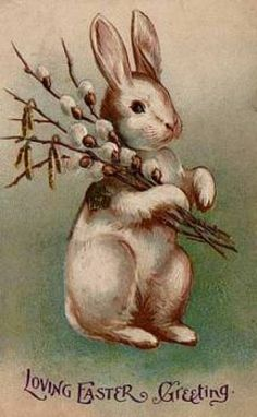 bunny carrying pussy willows.